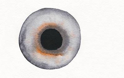 002_eye