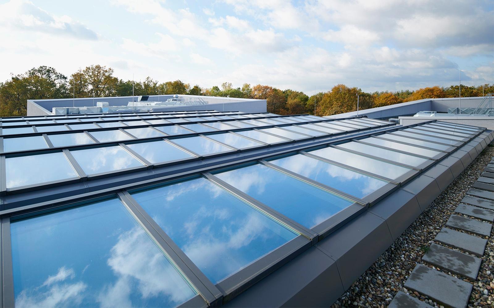Ovenlys vindyer på Hessenwald skolen i Tyskland
